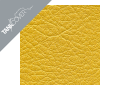 CBF 1000 , 2006 - 2010 2008 - 2010 gold yellow for PEARL AMBER YELLOW (K)